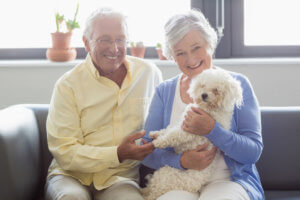 Senior Couple with Cute Puppy